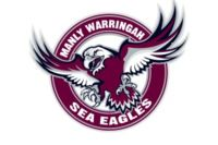 NRL-SEA-EAGLES-300x200.jpg Thumbnail